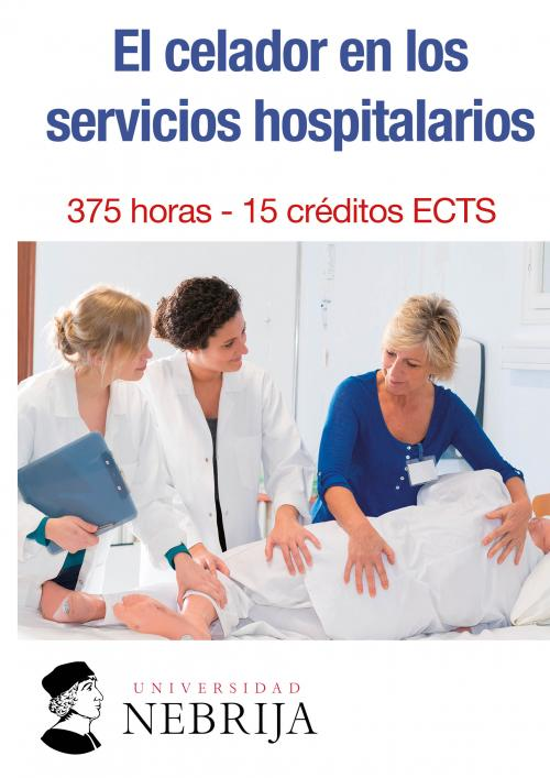 Servicios Hospitalarios Logoss Formacion